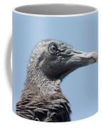 Black Vulture  Coffee Mug
