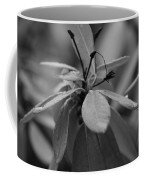Black White Coffee Mug