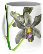 Black Yellow And Purple Orchid Coffee Mug