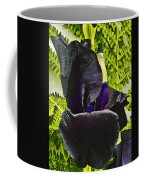 Blackbeard Framed  Coffee Mug