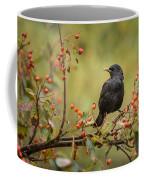 Blackbird On Branch Coffee Mug