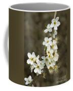 Blackthorn Or Sloe Blossom  Prunus Spinosa Coffee Mug