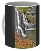 Blackwater Falls-2a Blackwater Falls State Park Wv Autumn Mid-morning Coffee Mug