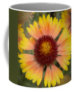 Blanket Flower Coffee Mug