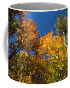 Blazing Autumn Colors - Just Lift Your Head Coffee Mug
