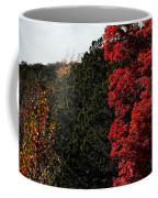Blazing Maple Tree Coffee Mug