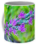 Blazing Star Coffee Mug