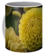 Blazing Yellow Dahlia Coffee Mug