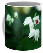 Bleeding Heart Vine Blossom Coffee Mug