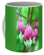Bleeding Hearts Flowers Coffee Mug