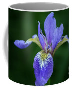 Blood Iris Coffee Mug