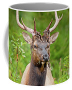 Bloody Elk Coffee Mug