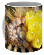 Blooming Barrel Cactus Coffee Mug