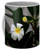Blooming Frangipani Flower Alongside Bud Coffee Mug
