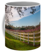 Blooming Peach Tree's At Boone Hall Coffee Mug