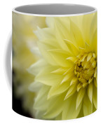 Blooming Yellow Petals Coffee Mug