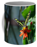 Blooms And Butterfly1 Coffee Mug