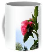 Blossom Bottom Coffee Mug