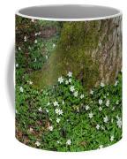 Blossom Windflowers Coffee Mug