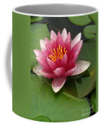 Blossoming Waterlily Coffee Mug