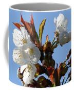 Blossoms 2 Coffee Mug