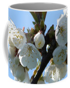 Blossoms 3 Coffee Mug