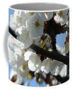 Blossoms 4 Coffee Mug