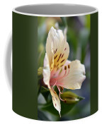 Blotched Coffee Mug