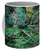 Blow Down Glacier National Park  Coffee Mug
