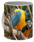 Blue And Gold Macaws Coffee Mug