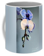 Blue And White Orchids Coffee Mug