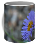 Blue Aster Coffee Mug