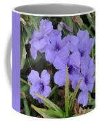 Blue Beauties Open To The Sun Coffee Mug