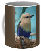 Blue-bellied Roller Coffee Mug