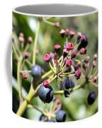 Blue Berry Coffee Mug