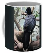Blue Billed Currasow Coffee Mug