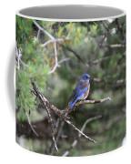 Blue Bird Perched Coffee Mug