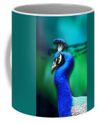 Blue Boy 2 Coffee Mug