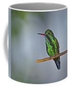 Blue-chinned Sapphire  Coffee Mug