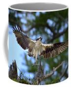 Blue Cypress Landing Coffee Mug