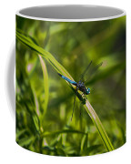 Blue Damsel Dragon Fly Coffee Mug