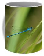 Blue Damselfly Coffee Mug