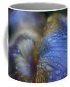 Blue Danube  Coffee Mug