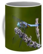 Blue Darter Coffee Mug