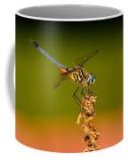 Blue Dasher Dragonfly Coffee Mug