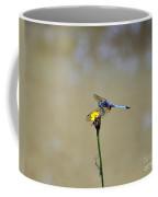Blue Dasher Male Coffee Mug