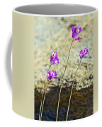 Blue Dicks Sway In A Breeze By Lower Palm Canyon Trail In Indian Canyons Near Palm Springs-california Coffee Mug