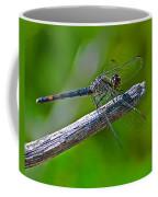 Blue Dragonfly 5 Coffee Mug