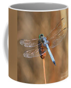 Blue Dragonfly Square Coffee Mug