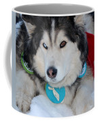 Blue Eye Brown Eye Coffee Mug